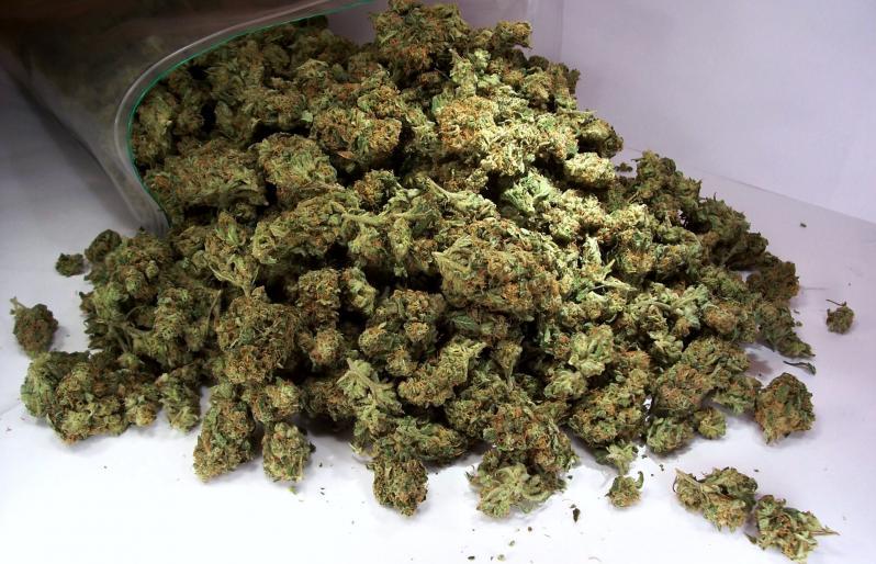 Виды наркотиков - марихуана