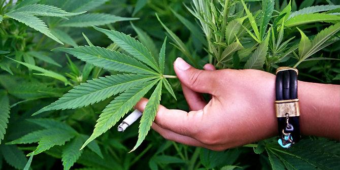 Марихуана - наркотик